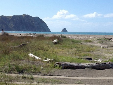 Tolaga Bay, East Coast