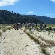 Discussing the unique approach to dune planting at Marahau