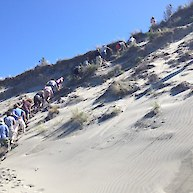 Scaling the dunes on Farewell Spit for a better view